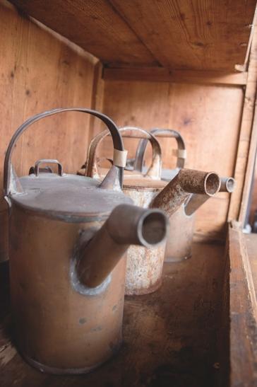 wateringcansgroup